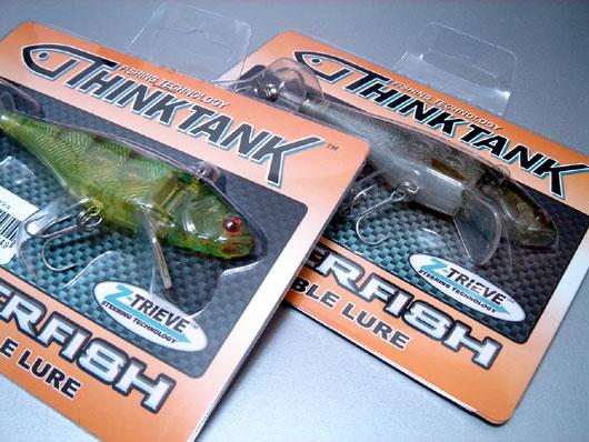 Trigger-Fish-001.jpg